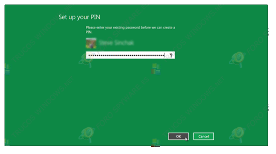 Seleccionar PIN en Windows 8